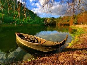 loner's boat